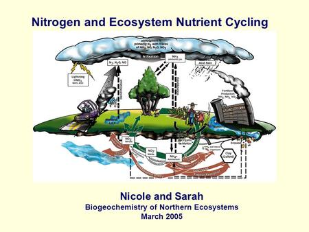 Nitrogen and Ecosystem Nutrient Cycling Nicole and Sarah Biogeochemistry of Northern Ecosystems March 2005.