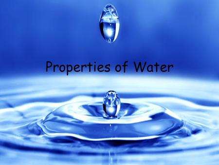Properties of Water. Water and Living Things What do you and an apple have in common? You both mostly consist of water! In fact water makes up nearly.
