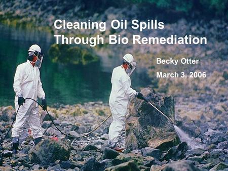 Cleaning Oil Spills Through Bio Remediation Becky Otter March 3, 2006.