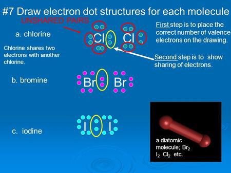 Cl Cl Br Br I I #7 Draw electron dot structures for each molecule
