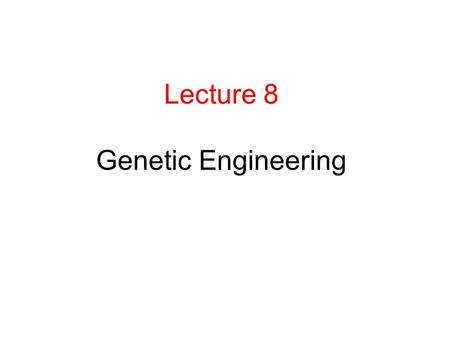 Lecture 8 Genetic Engineering. Medically important substances produced by genetic engineering Human Insulin- used to treat diabetes Past: extracted insulin.