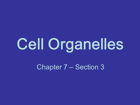 Cell Organelles Chapter 7 – Section 3.