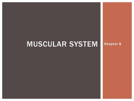 Muscular system Chapter 8.