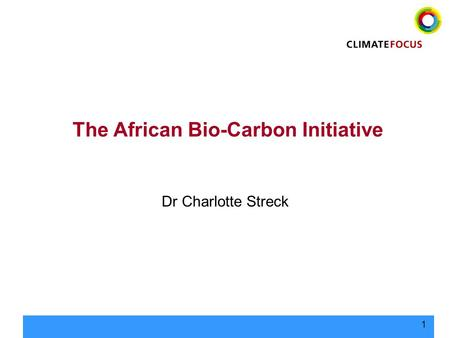 1 The African Bio-Carbon Initiative Dr Charlotte Streck.