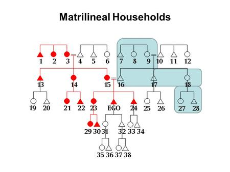 Matrilineal Households. Family Structure Nuclear –2 generations –Neolocal or ambilocal –Mobility –Industrialized and foraging societies Extended (46%