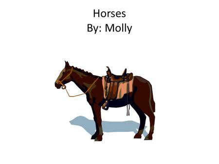 Horses By: Molly. Table of Contents Introduction……………………………….. Page 3 Chapter 1: A Foal Is Born Page 4 Chapter 2: Friends Page 5 Chapter 3: Horse Talk.