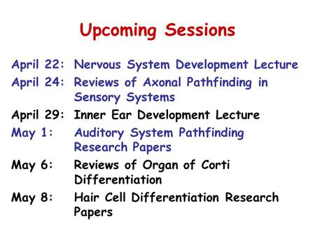Upcoming Sessions April 22:Nervous System Development Lecture April 24:Reviews of Axonal Pathfinding in Sensory Systems April 29:Inner Ear Development.