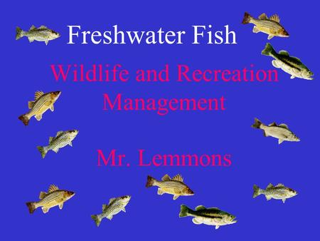 Wildlife and Recreation Management Mr. Lemmons Freshwater Fish.