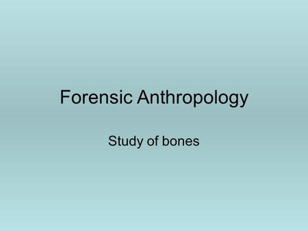 Forensic Anthropology Study of bones. Questions to ask about bones 1.Are the bones human? 2.What was the ____ of the individual? A.Size B.Age C.Sex D.Race.
