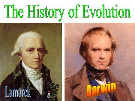 The History of Evolution