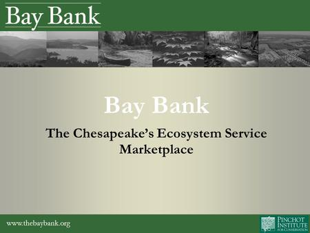 Www.thebaybank.org Bay Bank The Chesapeake's Ecosystem Service Marketplace.