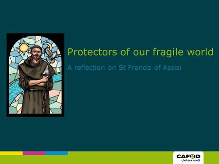 Protectors of our fragile world A reflection on St Francis of Assisi.