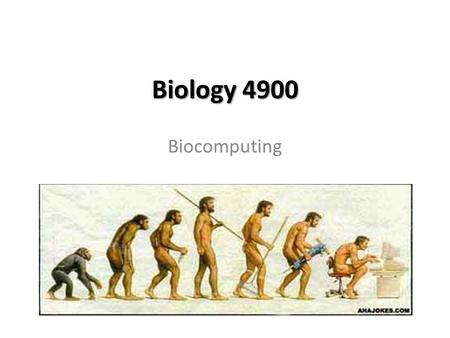 Biology 4900 Biocomputing. Chapter 2 Molecular Databases and Data Analysis.