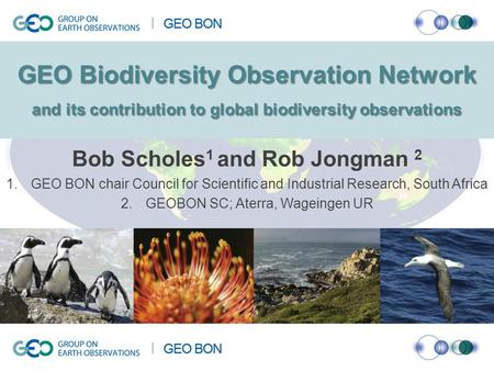 GEO Biodiversity Observation Network and its contribution to global biodiversity observations Bob Scholes 1 and Rob Jongman 2 1.GEO BON chair Council for.