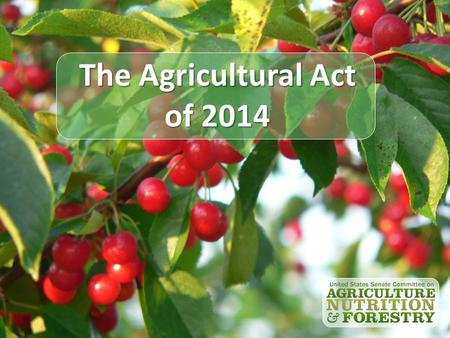 The Agricultural Act of 2014. Outline Timeline Budget Policy Issues Commodity Title Risk Management Options Crop Insurance Conservation Programs Questions.