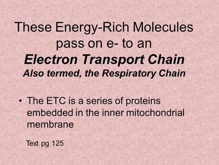 These Energy-Rich Molecules pass on e- to an Electron Transport Chain Also termed, the Respiratory Chain The ETC is a series of proteins embedded in the.