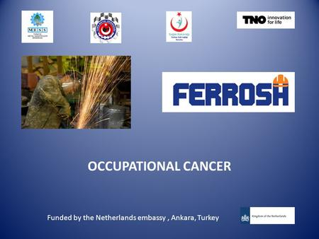 OCCUPATIONAL CANCER Funded by the Netherlands embassy, Ankara, Turkey.