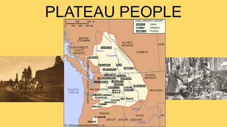 PLATEAU PEOPLE. Lived East of Cascades and West of the Rocky Mountains Land and climate shaped lifestyle Cold snowy winters Hot dry summers Seasonal moves.