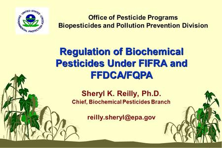 1 Office of Pesticide Programs Biopesticides and Pollution Prevention Division Sheryl K. Reilly, Ph.D. Chief, Biochemical Pesticides Branch