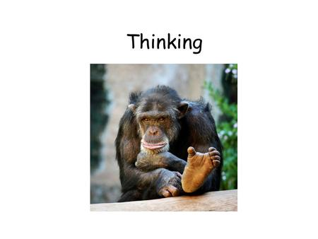 Thinking. What is thought? There are basically two types of thought… 1.Concepts (schemas)…usually based on prototypes. 2.Images Our concept of men may.
