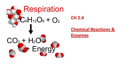 CH 2.4 Chemical Reactions & Enzymes.