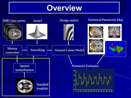 OverviewOverview Motion correction Smoothing kernel Spatial normalisation Standard template fMRI time-series Statistical Parametric Map General Linear.