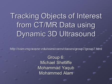 Tracking Objects of Interest from CT/MR Data using Dynamic 3D Ultrasound  Group 6: Michael.