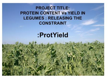 :ProtYield PROJECT TITLE: PROTEIN CONTENT Vs YIELD IN LEGUMES : RELEASING THE CONSTRAINT.