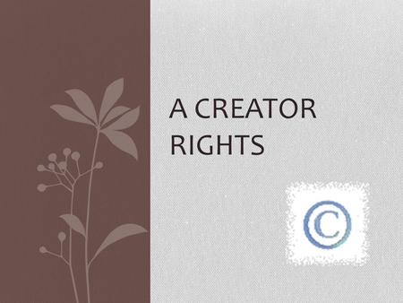 A CREATOR RIGHTS. What is something you've made that your are proud of? Music or songs Poem or story Photo or video.