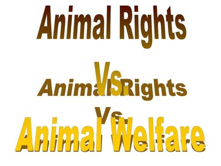 Animal Welfare: belief that animals should be treated humanely. This includes proper housing, nutrition, disease prevention and treatment, responsible.