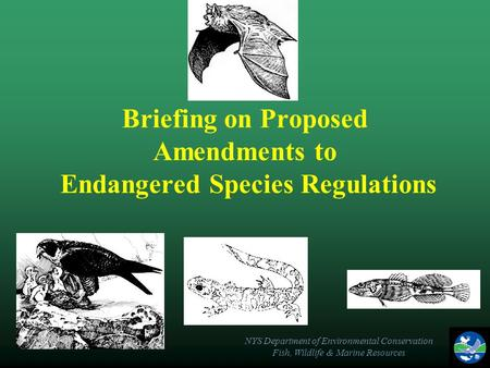 NYS Department of Environmental Conservation Fish, Wildlife & Marine Resources Briefing on Proposed Amendments to Endangered Species Regulations.