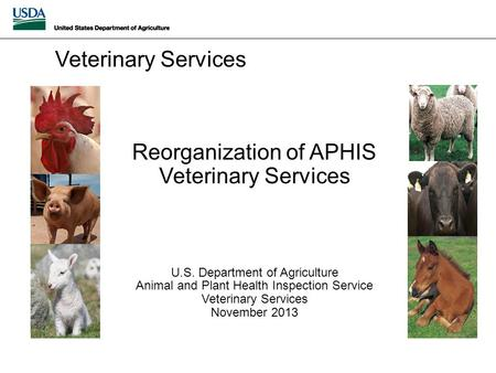 Reorganization of APHIS Veterinary Services U.S. Department of Agriculture Animal and Plant Health Inspection Service Veterinary Services November 2013.