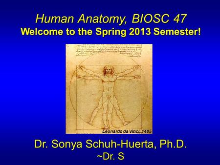 Welcome to the Spring 2013 Semester!