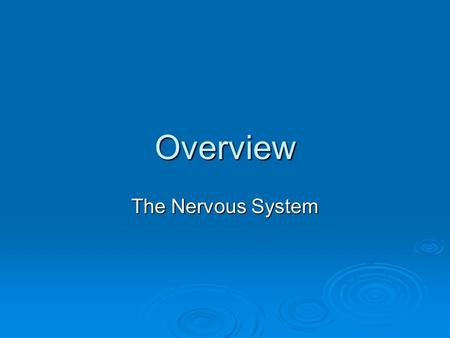 Overview The Nervous System. The nervous system of the human is the most highly organized system of the body. The overall function of the nervous system.