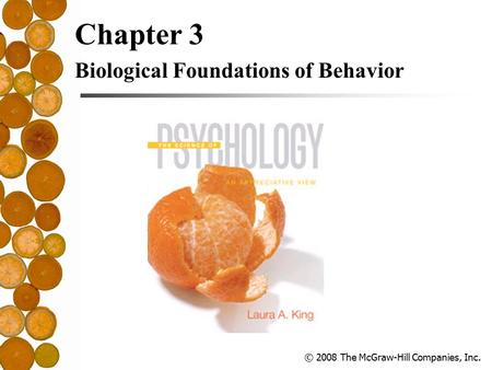 © 2008 The McGraw-Hill Companies, Inc. Chapter 3 Biological Foundations of Behavior.