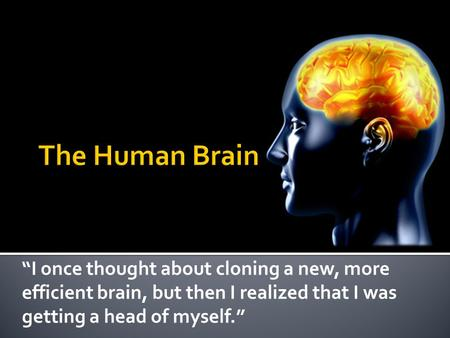 """I once thought about cloning a new, more efficient brain, but then I realized that I was getting a head of myself."""