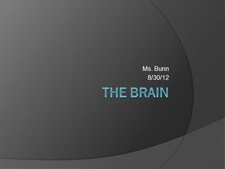 Ms. Bunn 8/30/12. There are 4 lobes of the brain  The frontal lobe- top front  The parietal lobe- middle section  The temporal lobe- below the parietal.