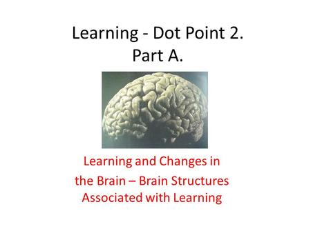 Learning - Dot Point 2. Part A. Learning and Changes in the Brain – Brain Structures Associated with Learning.