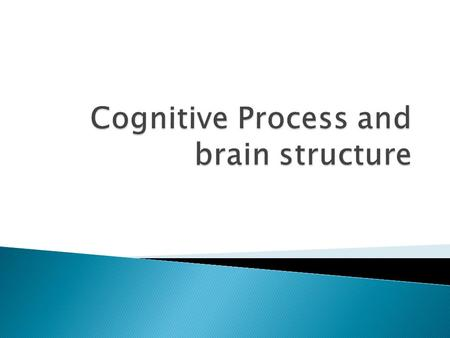 Cognitive Process and brain structure