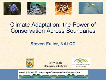 Climate Adaptation: the Power of Conservation Across Boundaries Steven Fuller, NALCC The Wildlife Management Institute.
