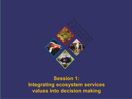 TEEB Training Session 1: Integrating ecosystem services values into decision making.