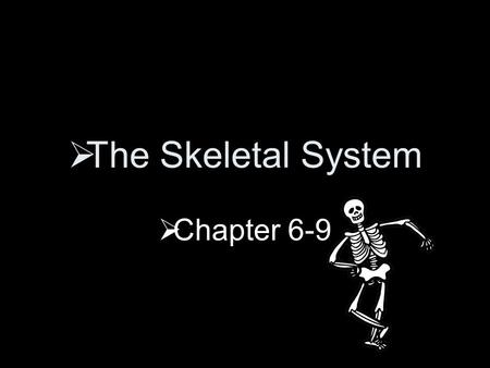  The Skeletal System  Chapter 6-9  Individual bones:  Tissues  Bone  Cartilage  Epithelial tissue  Fibrous connective tissue  Blood  Nervous.