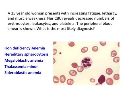 A 35 year old woman presents with increasing fatigue, lethargy, and muscle weakness. Her CBC reveals decreased numbers of erythrocytes, leukocytes, and.