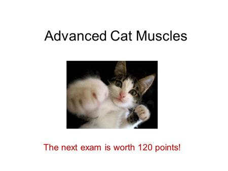 The next exam is worth 120 points!