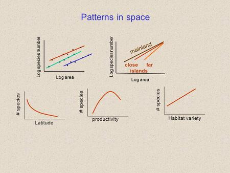 Patterns in space Log area Log species number productivity # species Habitat variety # species Latitude # species mainland Log area Log species number.