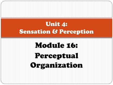 Unit 4: Sensation & Perception