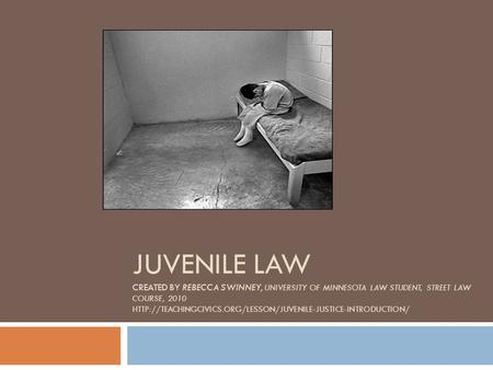 JUVENILE LAW CREATED BY REBECCA SWINNEY, UNIVERSITY OF MINNESOTA LAW STUDENT, STREET LAW COURSE, 2010