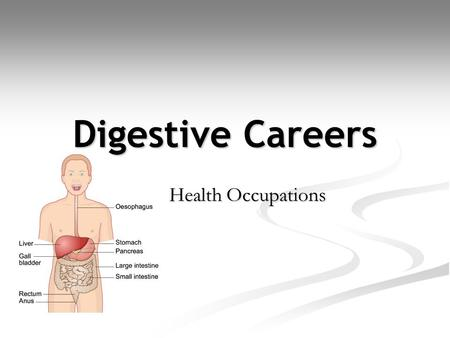 Digestive Careers Health Occupations.