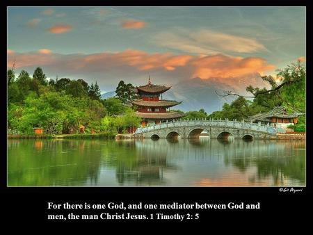 For there is one God, and one mediator between God and men, the man Christ Jesus. 1 Timothy 2: 5.