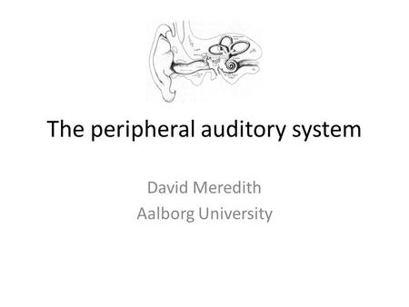 The peripheral auditory system David Meredith Aalborg University.